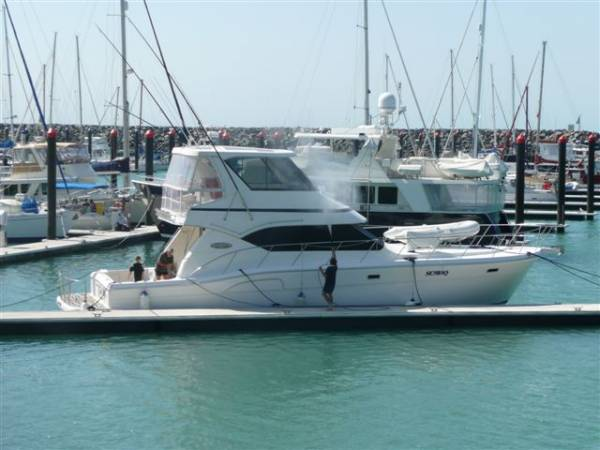 Kingfisher 50 Royale
