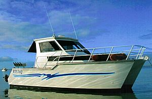Aztec 34 Powercat