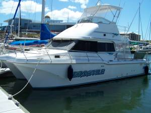 Cougar Cat Flybridge